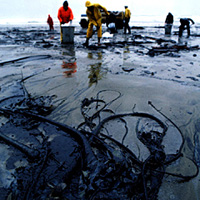 Is Oil A Fossil Fuel >> Eli Energy Support Materials Fossil Fuels
